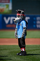 Erie SeaWolves mascot SeaWolf before an Eastern League game against the Akron RubberDucks on June 2, 2019 at UPMC Park in Erie, Pennsylvania.  Erie defeated Akron 8-5 in eleven innings in the second game of a doubleheader.  (Mike Janes/Four Seam Images)