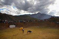 A matador holds a cape at a bullfight at the Yawar Fiesta in Coyllurqui in the Peruvian Andes on Independence Day.