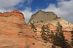 Zion National Park Calendar Edit