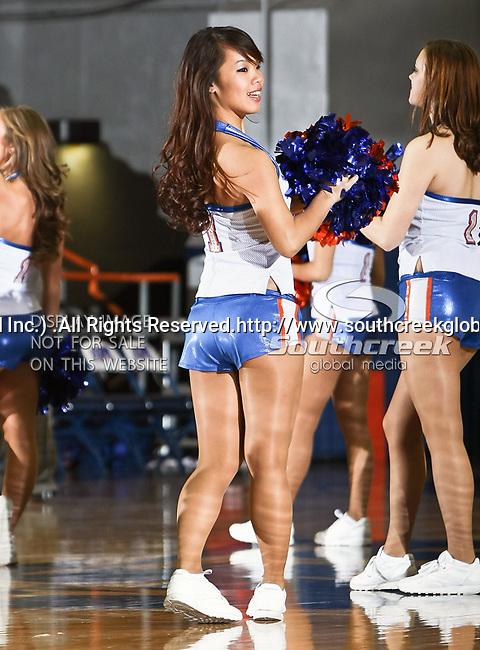 Texas-Arlington Mavericks cheerleaders in action during the game between the Texas A&M- Corpus Christi Islanders and the University of Texas-Arlington Mavericks held at the University of Texas in Arlington's Texas Hall in Arlington, Texas. UTA defeats Texas A&M- Corpus Christi 70 to 49..