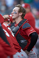 North Carolina State Wolfpack catcher Andrew Knizner (11) watches from the dugout during the game against the Charlotte 49ers at BB&T Ballpark on March 29, 2016 in Charlotte, North Carolina. The Wolfpack defeated the 49ers 7-1.  (Brian Westerholt/Four Seam Images)