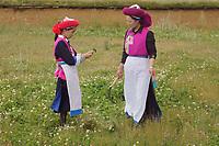 Diqing Tibetan Autonomous Prefecture, Yunnan Province, China - Tibetan women work in the fields, August 2018.