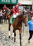 JULY 10, 2021: Du Jour post parade in the Gr.1 Belmont Derby Invitational Stakes, going 1 1/4 mile on the turf, at Belmont Park in Elmont, New York. Sue Kawczynski/Eclipse Sportswire/CSM