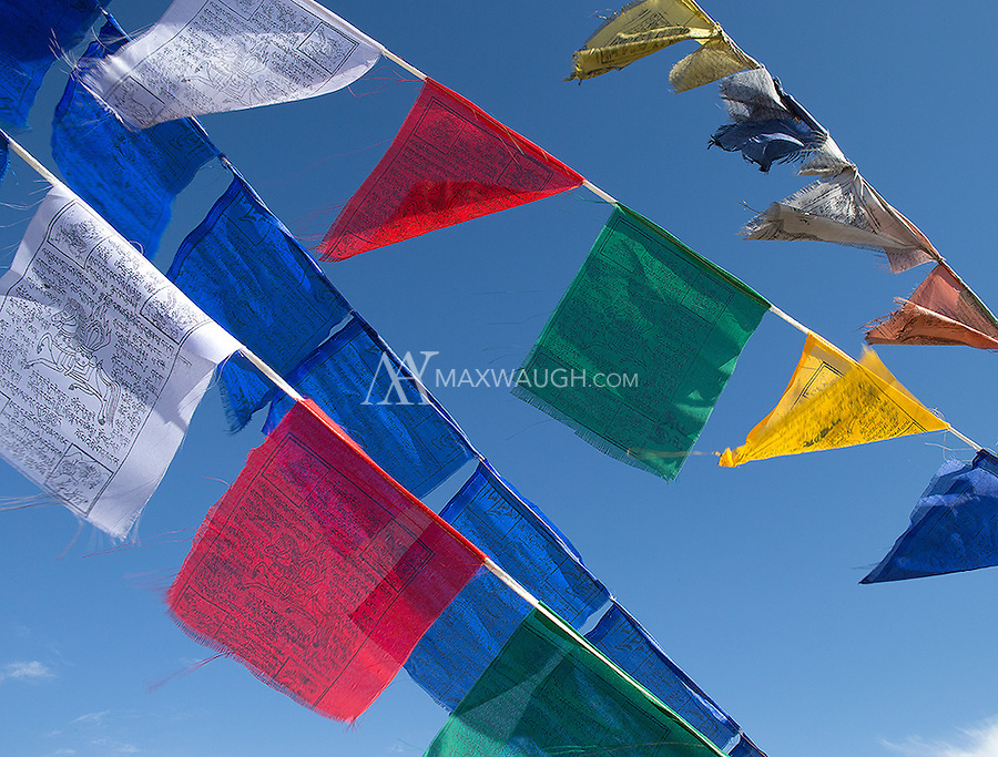 Buddhist prayer flags are a common sight in Ladakh.