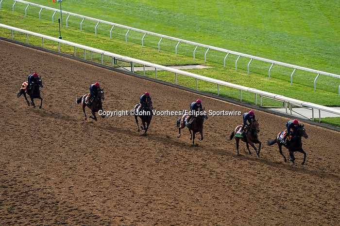 November 5, 2020: The Aidan O'Brien group of trainees exercises at Keeneland Racetrack in Lexington, Kentucky on November 5, 2020. John Voorhees/Eclipse Sportswire/Breeders Cup/CSM