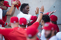 Orem Owlz center fielder D'Shawn Knowles (4) celebrates with teammates in the dugout after hitting his second home run of the game during a Pioneer League game against the Ogden Raptors at Home of the OWLZ on August 24, 2018 in Orem, Utah. The Ogden Raptors defeated the Orem Owlz by a score of 13-5. (Zachary Lucy/Four Seam Images)