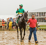 BALTIMORE, MD - MAY 19: Switzerland, #5, ridden by Ricardo Santana, Jr., wins the Maryland Sprint on Preakness Day at Pimlico Race Course on May 19, 2018 in Baltimore, Maryland (Photo by Sue Kawczynski/Eclipse Sportswire/Getty Images)