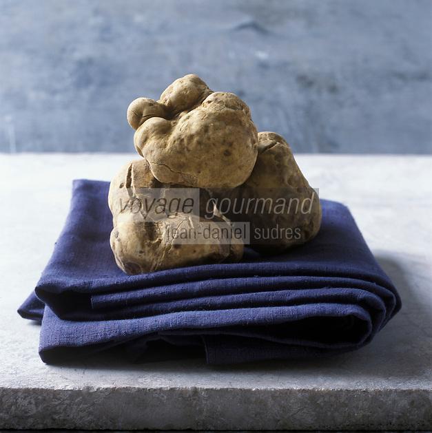 Europe/Italie/Piemont/Alba: Truffe blanche d'Alba, tuber magnatum pico  - Stylisme : Valérie LHOMME // Europe, Italy, Piedmont, Alba: Alba White truffle, tuber magnatum pico