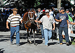 10 July 25: Maybesomaybenot (no. 2), ridden by Julien Leparoux and trained by Michael Maker, wins the 96th running of the grade 2 Sanford Stakes for two year olds at Saratoga Race Track in Saratoga Springs, New York.