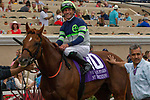 """DEL MAR, CA. AUGUST 26: #10 Giant Expectations ridden by Gary Stevens in the winners circle after a convincing win in the Pat O'Brien Stakes (Grade ll), Breeders' Cup """"Win and You're in Dirt Mile Division"""" on August 26, 2017, at Del Mar Thoroughbred Club in Del Mar, CA.(Photo by Casey Phillips/Eclipse Sportswire/Getty )"""