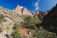 Mountains and canyon, McKittrick Canyon, Guadalupe Mountains National Park, Texas, USA, November 2005