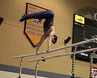2010 Men's NCAA Gymnastics TAA Mich