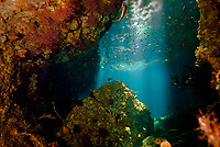 cave in The Passage, with sunlight streaming through. Raja Ampat, West Papua, Indonesia, Pacific Ocean