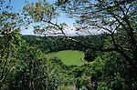 Parc national de la Montagne d Ambre..Lac vert