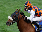 October 9, 2021: In Love (BRZ) #3, ridden by jockey Alex Achard wins the Keeneland Turf Mile on the turf (Grade 1) on opening weekend at Keeneland Racecourse in Lexington, K.Y. on October 9th, 2021. Candice Chavez/Eclipse Sportswire/CSM