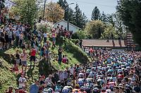 Peloton: First run up of the infamous Mur de Huy.<br /> <br /> 82nd La Flèche Wallonne 2018<br /> 1 Day Race: Seraing - Huy (198,5km)