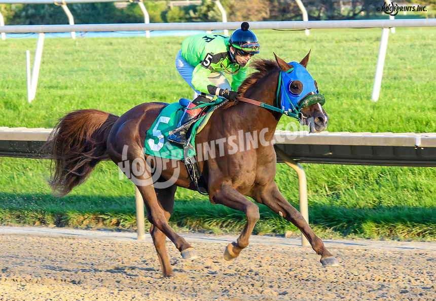 Quick and Rich winning at Delaware Park on 10/17/18
