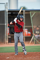 AZL D-backs Wyatt Mathisen (11) at bat during a rehab assignment in an Arizona League game against the AZL Mariners on August 7, 2019 at Peoria Sports Complex in Peoria, Arizona. AZL D-backs defeated the AZL Mariners 4-1. Walston pitched one inning and allowed one earned run while striking out three batters. (Zachary Lucy/Four Seam Images)