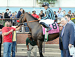 Private Zone (no. 8), ridden by Martin Pedroza and trained by Doug O'Neill, wins the 74th running of the grade 1 Vosburgh Invitational Stakes for three year olds and upward on September 28, 2013 at Belmont Park in Elmont, New York.  (Bob Mayberger/Eclipse Sportswire)
