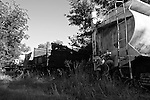 Old trucks rust in an overgrown lot in Bridgeboro, Ga. May 30, 2011.