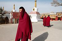 Tibetan monks in the thangka artists village, Upper Wutan Monastery, Rebgong (Chinese name - Tongren),  on the Qinghai-Tibetan Plateau. China.