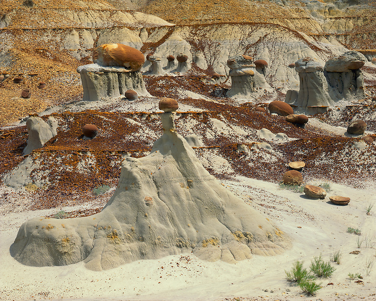 Cannonball concretions in the North Unit Badlands; Theodore Roosevelt National Park, ND