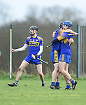 Newmarket's Colin Guilfoyle and fellow players celebrate their win over Sixmilebridge in the Clare Champion Cup final at Clonlara. Photograph by John Kelly.