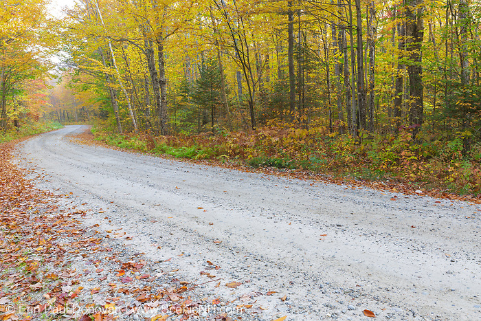 Autumn foliage along Haystack Road in the New Hampshire White Mountains during the autumn months.