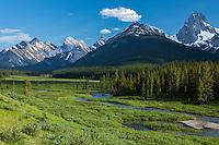 Smuts Creek runs through Moose Meadows in the Spray Valley, below numerous peaks within the Peter Lougheed Provincial Park, Alberta, Canada