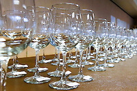 Four rows of empty wine glasses are lined up and ready for wine tastings at the Savor NW 2014 Wine Awards, Cannon Beach, OR