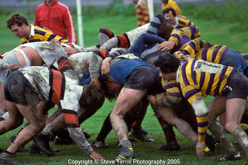 Rugby players in Delta Park in Portland, Oregon