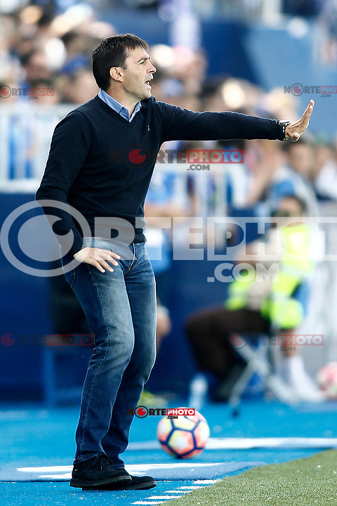 CD Leganes' coach Asier Garitano during La Liga match. April 16,2017. (ALTERPHOTOS/Acero) /NortePhoto.com