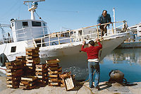 -  fishermans in Mazara del Vallo port....-  pescatori nel porto di Mazara del Vallo