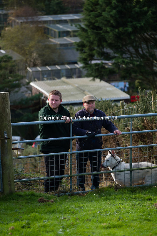 Pictured: Co-owner dean Tweedy (R) with and Ieuan Howells looking for the lynx near at Borth Wild Animal Kingdom (formerly Borth Animalarium) , Ceredigion Wales UK. Monday 30 October 2017<br /> Re: The search continues for Lillith, a juvenile European Lynx, (latin name Lynx Lynx) which escaped from its enclosure at Both Wild Animal Kingdom.  A police helicopter with thermal imaging cameras spotted the animal  in undergrowth near the zoo in the  3early evening yesterday, raising hopes that the creature has gone to ground close to its home