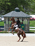 28 April 2011.  Sir Donovan and Katie Ruppel are eliminated when Sir Donovan refuses to complete the Dressage Test.