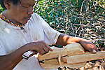 Violin hand-made by Ramon Duarte, spiritual and cultural elder of katupyry village near San Ignacio, Misiones, Argentina.