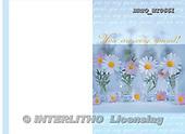 Alfredo, FLOWERS, photos, BRTOWI0661,#F# Blumen, flores