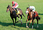 LEXINGTON, KY - OCTOBER 15: #7 Time and Motion and jockey John Velazquez win the 33rd running of The Queen Elizabeth II (Grade 1) Presented by Lane's End $500,000 at Keeneland Race Course for owner Phillips Racing Partnership and trainer James Toner.  October 15, 2016, Lexington, Kentucky. (Photo by Candice Chavez/Eclipse Sportswire/Getty Images)