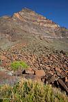 .Plage de valle Gran Rey dominé par l'impressionnant triangle du Merica (85 m).Playa de Valle Gran Rey dominated by the  mountain.Merica (850m ).