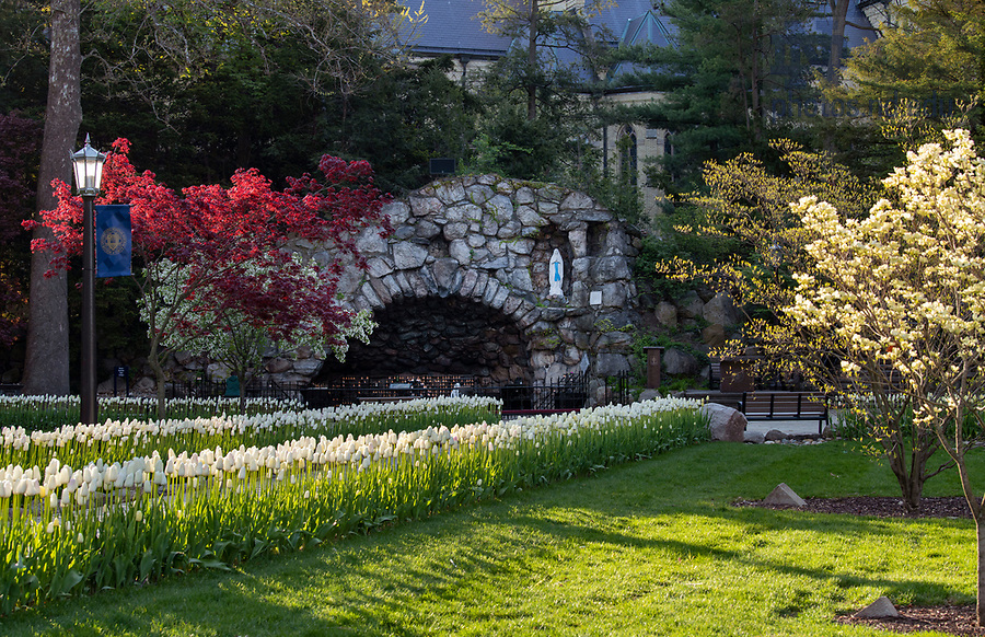 May 13, 2020; Grotto spring 2020. (Photo by Barbara Johnston/University of Notre Dame)