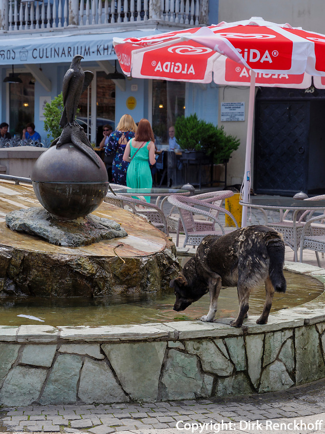 Hund trinkt am Brunnen im Bäderviertel Abanotubani, Tiflis – Tbilissi, Georgien, Europa<br /> Dog in thermal quarter Abanotuban, Tbilisi, Georgia, Europe