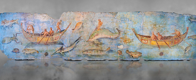 Roman Fresco with boats and marine life from the second quarter of the first century AD. (mosaico fauna marina da porto fluviale di san paolo), museo nazionale romano ( National Roman Museum), Rome, Italy. inv. 121462 .  <br /> The frescoes depict boats decorated as boats which went along the Tiber on festival days; their shape appears to be the caudicariae boats, used to transport merchandise. In the fresco fragment exhibited here (Ambiente E) the boat on the left depicts probably the group of 'side Serapide and Demetra on the stern, whereas the one on the right presents a crowned character on the bow and, on the stern, a feminine figure fluctuating in the air. Between the two boats, a young boy (a cupid or Palaimon-Portunus) rides a dolphin. All around are depicted several fish incredibly casting their shadows on the sea. The ichthyic fauna, lifeless as in still life decoration, is detailed as in a scientific catalogue. For the most part the represented species live next to the coast or were bred by the Romans in the piscinae salsac or in ponds. It is possible to recognize the rock mullet (mullus sunnuletus) and the mud one (mullus barbatu4 the scorpion fish (scorpoena) the dentex (dentex dentex), the aguglia (belone agus) the dolphin (delphinus delphis) and the golden mullet (lire curate).