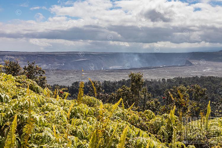 Halema'uma'u Crater at Hawai'i Volcanoes National Park, Big Island of Hawai'i.