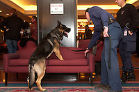 Tuesday December 11, 2001<br /> A RCMP policeman with his dog look for explosives in the Montreal Fairmount-Queen Elizabeth Hotel before the arrival of Russian Federation  Prime Minister :<br /> MIKHAIL KASYANOV at a Round Table with Canadian business leaders hosted by SNC-Lavalin,<br /> <br /> Photo by Sevy-Images Distribution<br /> <br /> NOTE : uncorrected D-1H  Jpeg,., saved as Adobe 1998 RGB