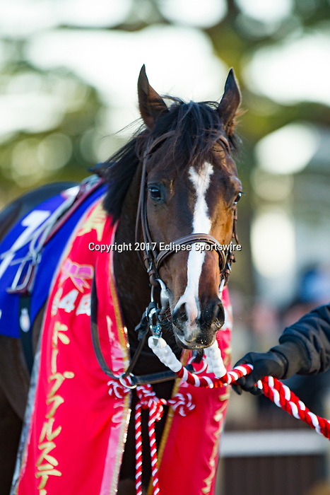 FUNABASHI,JAPAN-DECEMBER 28: Time Flyer,ridden by Cristian Demuro, after winning the Hopeful Stakes at Nakayama Racecourse on December 28,2017 in Funabashi,Chiba,Japan (Photo by Kaz Ishida/Eclipse Sportswire/Getty Images)