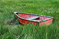 Charming rowboat in wetland grass, Cape Cod, Massachusetts, USA.
