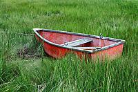 Charming rowboat in wetland grass, Cape Cod, Massachusetts, USA.