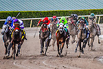 HALLANDALE BEACH, FLORIDA - APRIL 2:  Nyquist #4, ridden by Jockey Mario Gutierrez, coming around the final turn with Mohaymen #9, ridden by Jockey Junior Alvarado on his right, and eventually winning the Florida Derby at Gulfstream Park on April 2, 2016 in Hallandale Beach, Florida (photo by Douglas DeFelice/Eclipse Sportswire/Getty Images)