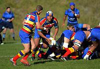 170425 Swindale Shield Club Rugby - Johnsonville v Tawa