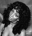 Donna Summer Archive